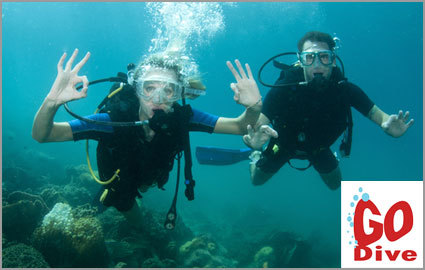 CHF 59 instead of CHF 118 for a Discover Scuba Diving Course with GO Dive 