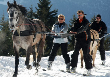 Discover a brand new experience! Ski-Joering: cross country skiing pulled b... Image